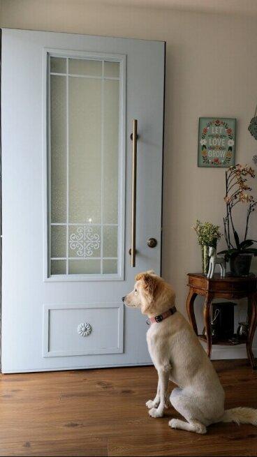 דלת כניסה GLR רחלי