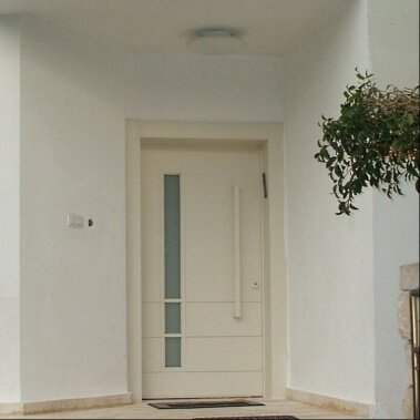 דלת כניסה RS עם חלון